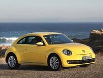 Cần mua xe Volkswagen Beetle cũ các loại.