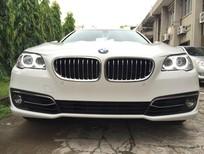 Bán ô tô BMW 5 Series 528i Luxury sản xuất 2017, màu trắng, nhập khẩu