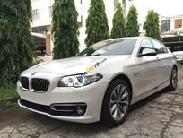 Bán xe BMW 520i chính hãng 2016