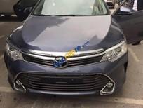 Công Ty TNHH Toyota Hải Dương khai trương, Toyota Camry 2016 khuyến mại 70 triệu, hotline PKD 0906 34 1111, Mr Thắng