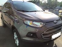 Xe Ford EcoSport sản xuất 2014, màu xám