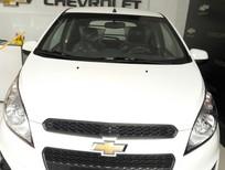 Bán ô tô Chevrolet Spark DUO 1.2, màu trắng giá cạnh tranh, mẫu xe nhỏ chở hàng trong TP