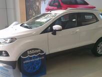 Ford Ecosport xả kho, giá cực sốc- đủ màu giao ngay- hỗ trợ ngân hàng lãi suất thấp