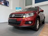 Bán ô tô Volkswagen Tiguan sản xuất 2016, nhập khẩu Đức, trả trước chỉ 256 triệu
