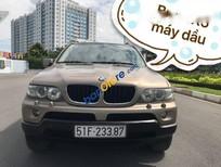 Cần bán gấp BMW X5 sản xuất 2005, nhập khẩu nguyên chiếc, số tự động