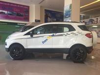 Bán ô tô Ford EcoSport năm 2016, màu trắng, nhập khẩu nguyên chiếc