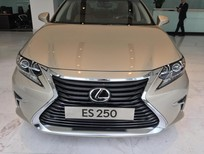 Bán Lexus ES 250 bản full chính hãng tại Lexus Thăng Long