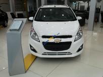 Cần bán xe Chevrolet Spark 1.2 LT năm 2017, màu trắng