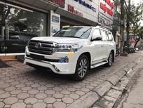 Cần bán Toyota Land Cruiser VX. R 2017, màu trắng, xe giao ngay