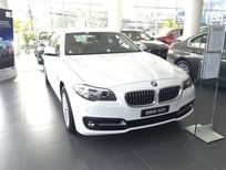 Cần bán xe BMW 5 Series 520i 2017 hoàn toàn mới, màu trắng, nhập khẩu chính hãng