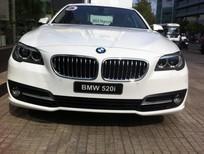 Bán xe BMW 5 Series 520i 2017, màu trắng, nhập khẩu nguyên chiếc, BMW chính hãng, giá rẻ nhất, giao xe ngay