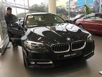 Cần bán xe BMW 5 Series 520i 2017, màu đen, nhập khẩu chính hãng