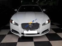 Cần bán lại xe Jaguar XF 2.0 AT đời 2014, màu trắng, nhập khẩu