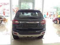 Bán Ford Everest Titanium 2.2L 2017, nhập khẩu nguyên chiếc