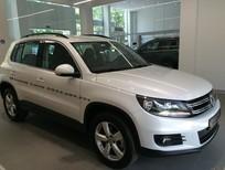 Volkswagen Tiguan 2016 màu trắng nhập mới 100%  - Quang Long 0933689294