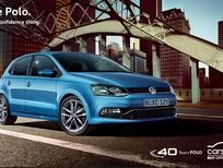 Xe Volkswagen Polo Hatchback 2016 nhập khẩu mới 100% - Quang Long 0933689294
