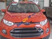 Bán xe Ford EcoSport 1.5L Titanium đời 2017