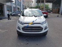 Bán Ford EcoSport 1.5L Titanium đời 2017, màu trắng