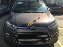 Cần bán Ford EcoSport AT đời 2017, mới 100%