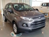 Bán xe Ford EcoSport Titanium 2017, 593 triệu