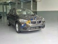Bán BMW X1 Standard đời 2016, màu nâu, nhập khẩu nguyên chiếc
