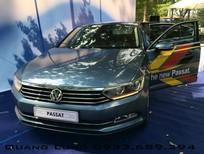 Volkswagen Passat GP nhập mới chính hãng từ Đức - Quang Long 0933689294