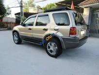 Bán Ford Escape XLT đời 2002, màu vàng số tự động