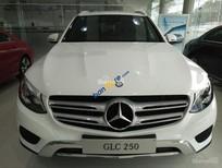 Cần bán xe Mercedes GLC250 4Matic 2017, màu trắng nội thất nâu, giao ngay