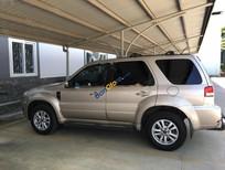Bán Ford Escape XLS 2.3AT năm sản xuất 2009, màu bạc, giá chỉ 455 triệu