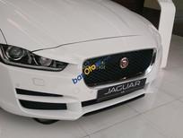 Giá xe xe sedan hạng sang, bán Luxury Jaguar XF Pure -2017 màu trắng, xe giá tốt- gọi 0918842662
