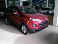 Bán xe Ford EcoSport Titanium 2017