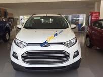 Ford EcoSport 2017- 140tr nhận ngay xe mới - LH 0938 055 993 Ms. Tâm