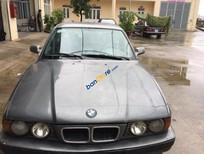 Cần bán gấp BMW 5 Series 525i năm 1995, màu xám, xe nhập chính chủ, giá tốt