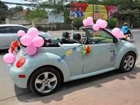 Cần bán Volkswagen New Beetle đời 2004, màu xanh lam, xe nhập giá cạnh tranh