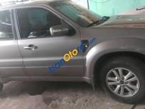 Bán Ford Escape đời 2010, màu xám, xe chạy kĩ bảo dưỡng thường xuyên