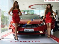 Bán xe Kia Cerato 2.0 AT sản xuất năm 2017, màu đỏ