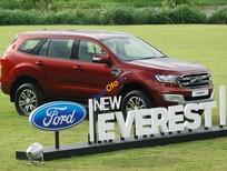 Cần bán Ford Everest 2.2L 4x2 Titanium AT đời 2016, nhập khẩu