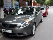 Cần bán Kia Forte SLi 2010, màu xám, xe nhập chính chủ