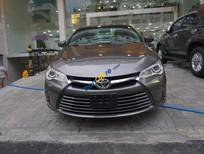 Bán ô tô Toyota Camry XLE đời 2015, màu xám (ghi), nhập khẩu nguyên chiếc