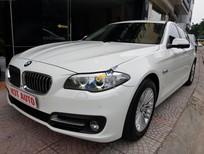 Cần bán BMW 5 Series 520 LCI đời 2014, màu trắng, nhập khẩu