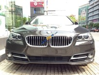 Bán xe BMW 5 Series 520i đời 2016, màu đen, nhập khẩu chính hãng