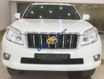 Bán Toyota Prado đời 2010, màu trắng, nhập khẩu chính hãng