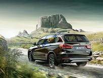 Bán xe BMW X5 xDrive35i đời 2017, màu nâu, nhập khẩu