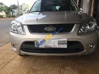 Bán Ford Escape AT năm 2010, màu bạc, giá chỉ 480 triệu