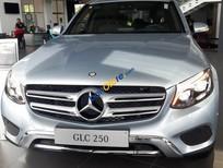 Bán Mercedes 250 4 MATIC năm 2017, màu bạc