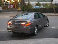 Cần bán lại xe Toyota Camry XLE năm 2015, màu xám, nhập khẩu nguyên chiếc