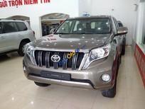 Cần bán lại xe Toyota Land Cruiser Prado xe nhập, đẹp như mới