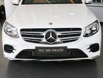 Bán Mercedes GLC 300 4MATIC 2017 - Chỉ cần thanh toán trước 4100 triệu đồng, nhận xe ngay