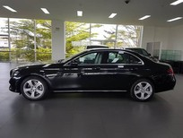 Cần bán xe Mercedes E250 2017 - Sở hữu xe ngay chỉ từ 480 triệu đồng