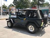 Cần bán lại xe Jeep Wrangler đời 1995, màu xanh lam, nhập khẩu số sàn